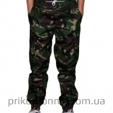 Стильные штаны джоггеры DPM