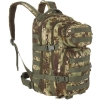 Рюкзак Mil-Tec US ASSAULT PACK SM MANDRA WOOD 20л