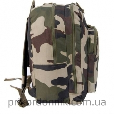 Рюкзак 25л Mil-Tec Day Pack TARN CCE